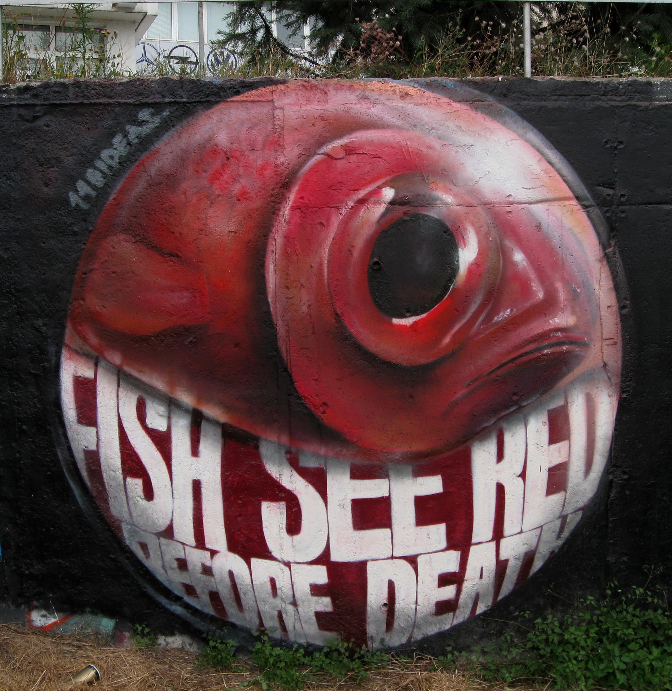 140ideas_FishSeeRed_sofia08