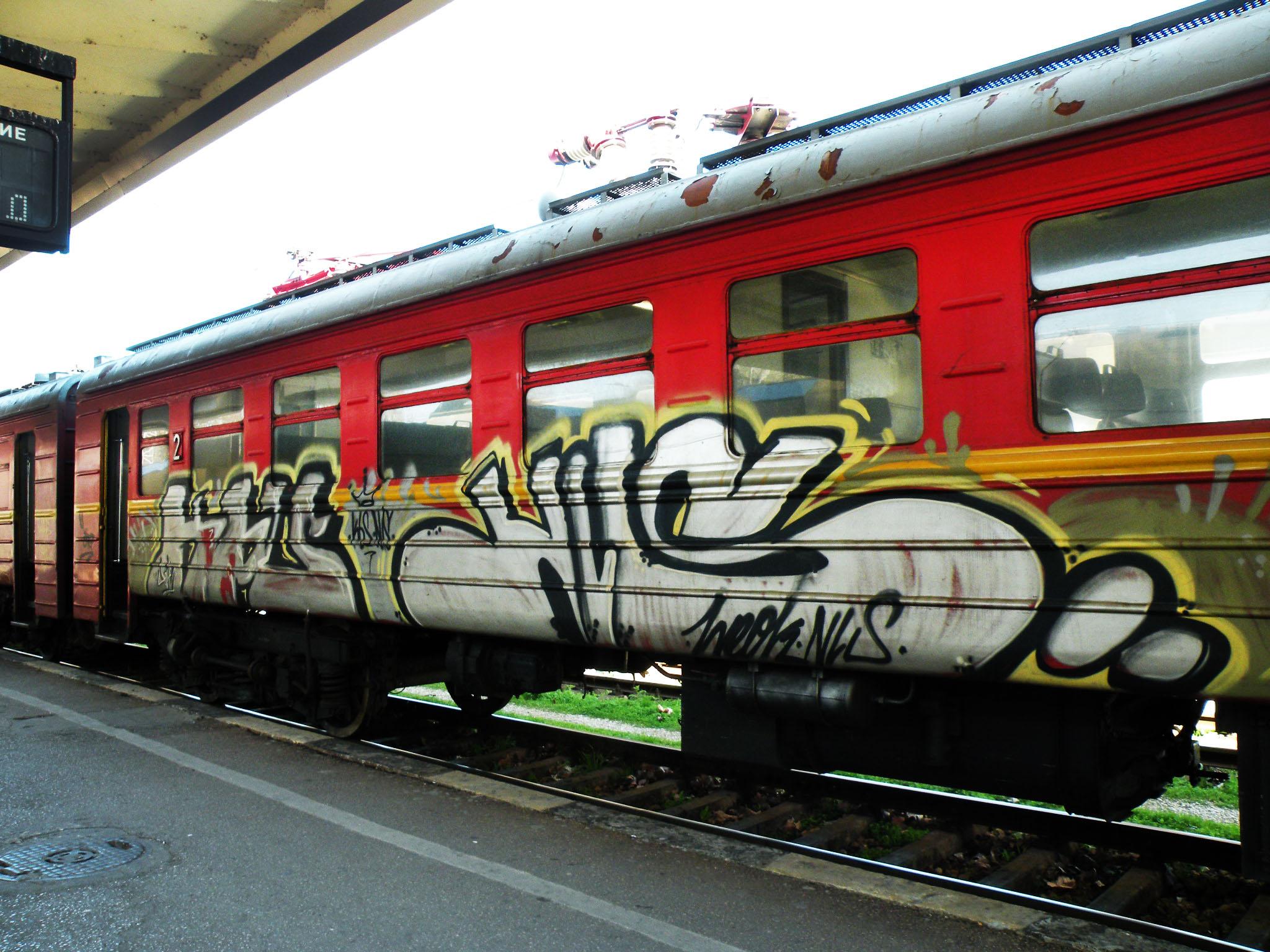 kbs nls 2010