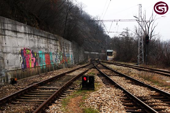 IMG_1354